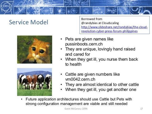 pets-vs-cattle.jpg